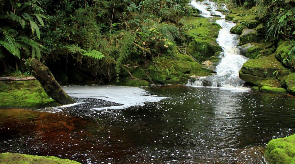 Fuente: www.parquesnacionales.gov.co/