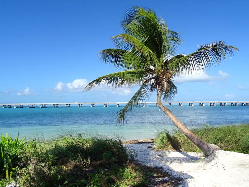 Las mejores playas en Florida - Bahia Honda State Park