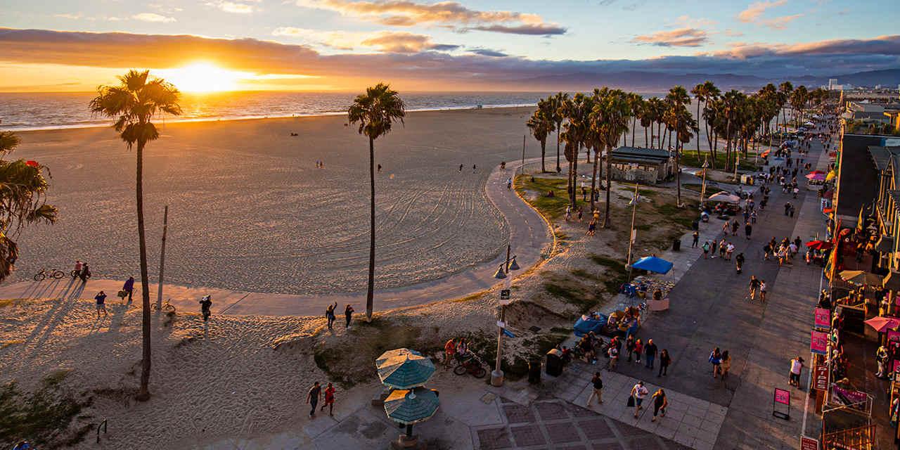 Las mejores playas en Florida - Venice Beach