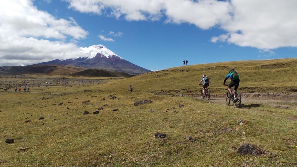 ¿Qué hacer en Quito? - Parque Nacional Cotopaxi