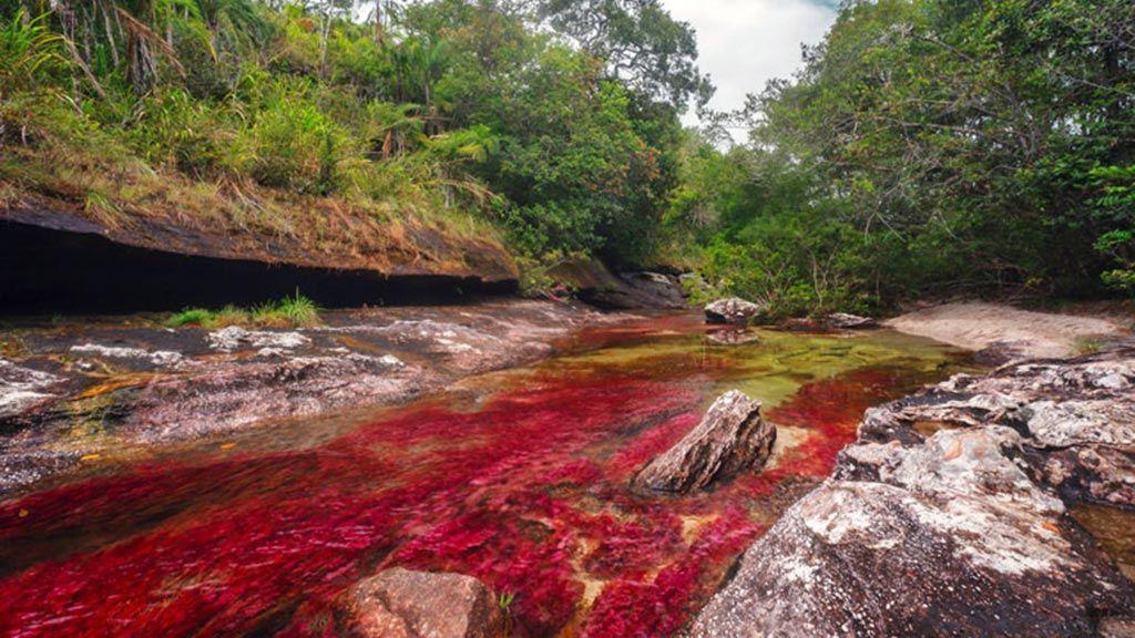 Lugares curiosos de Colombia - La Macarena