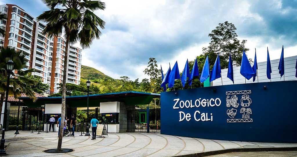 Planes para hacer en Cali - Zoológico de Cali