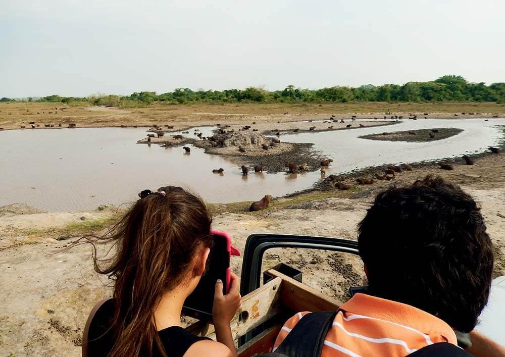 Planes exóticos en Colombia - Hato La Aurora
