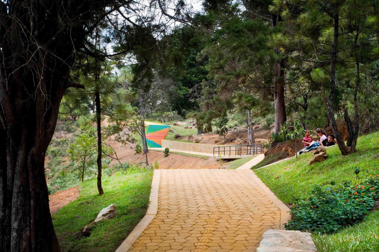 Planes exóticos en Colombia - Jardin Circunvalar de Medellin
