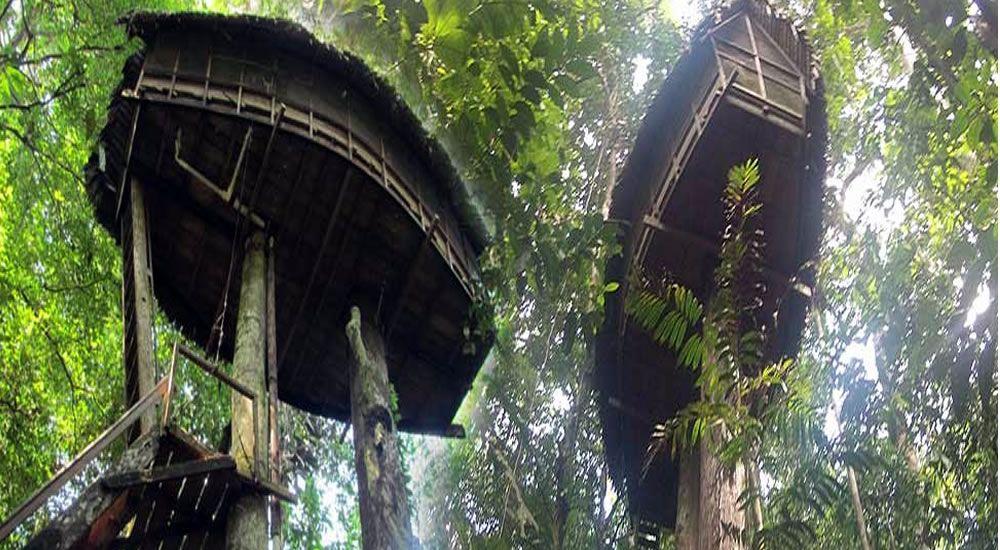 Planes exóticos en Colombia - Reserva Natural Tanimboca